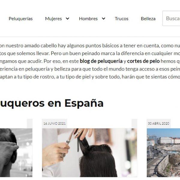 Peluquero.org - Web Ardilla - SeoDeseo