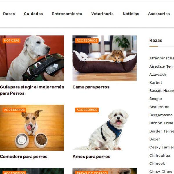 Perros.review - Web Ardilla - SeoDeseo