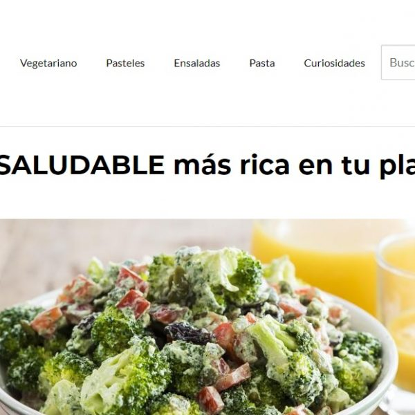 comidasaludable.org - Web Ardilla - SeoDeseo